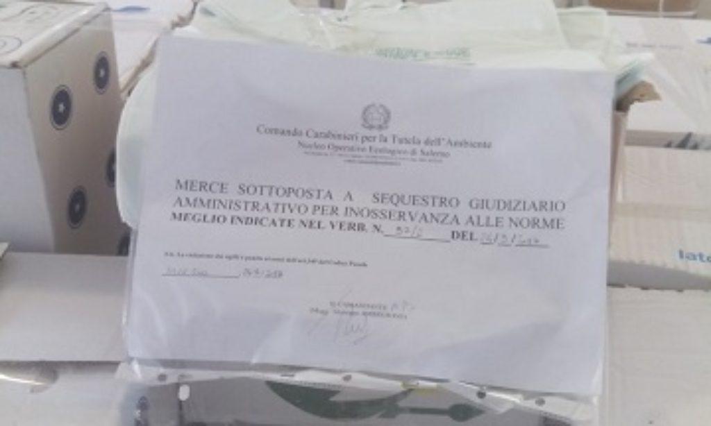 Salerno centro: sequestrati quintali di shoppers monouso non conformi alla legge