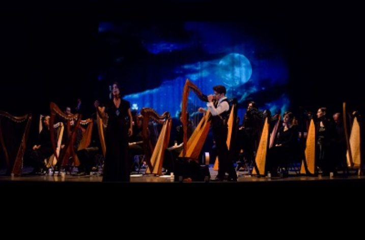 Il fascino e la magia dell'Arpa Celtica del musicista Fabio Contestabile