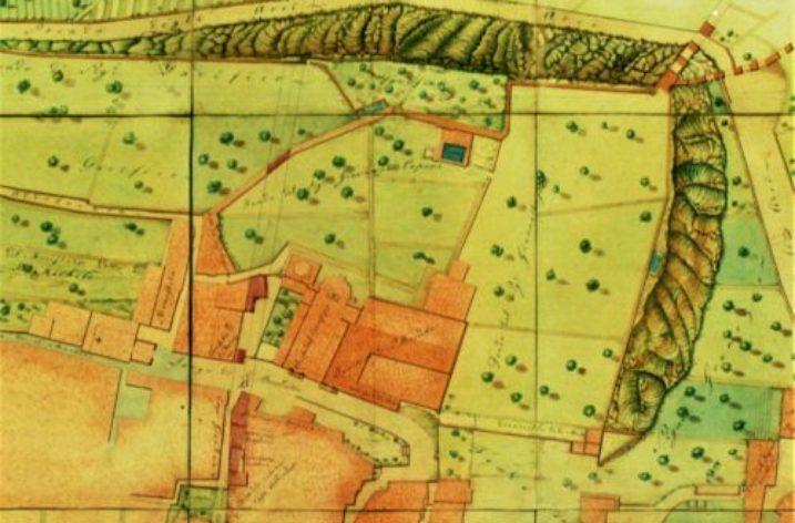 """L'area dell'antico """"Orto Magno"""" dal Medioevo alla metà del XIX secolo"""