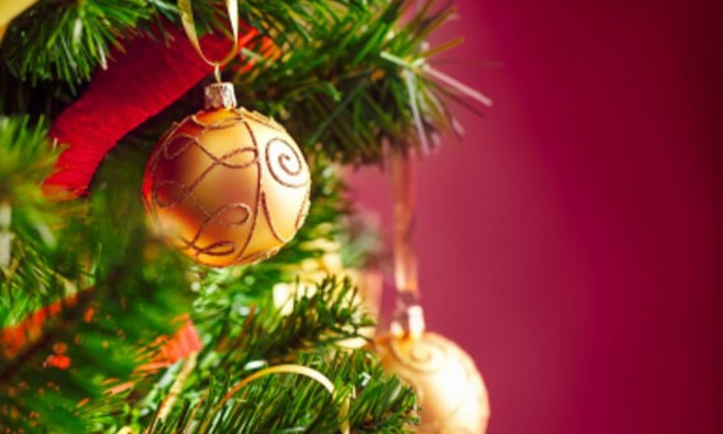 L'albero di Natale, meglio se vero e a km. zero