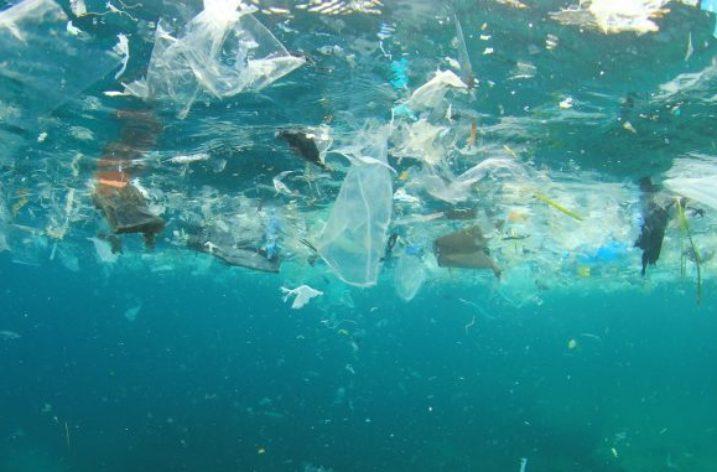 Parco del Cilento avanguardia nella guerra alla plastica inquinante