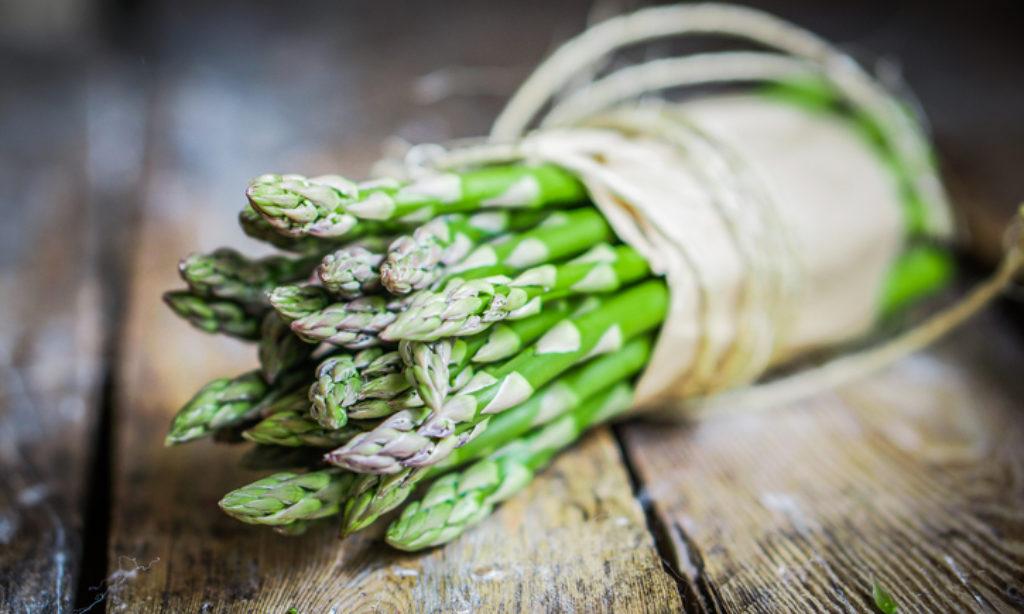 Dal 1 al 5 maggio, festa dell'asparago selvatico a Roscigno