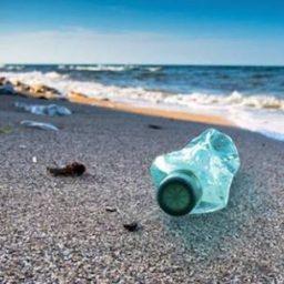 Mangiamo e respiriamo plastica